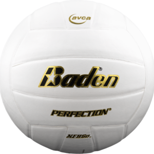 BADEN PERFECTION LEATHER VOLLEYBALL VX5E